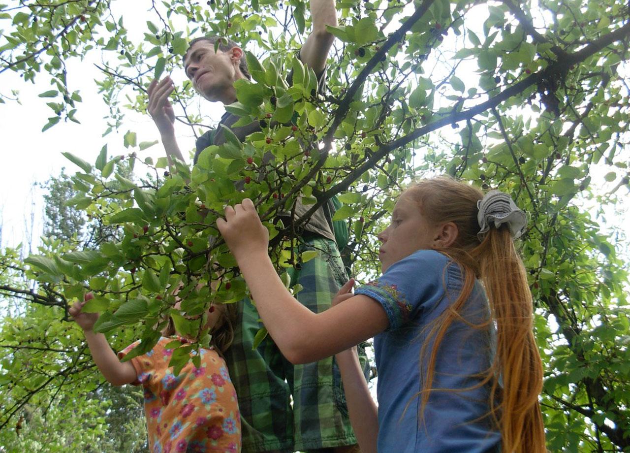 Alexey Pylov translator english-russian, translator on the tree